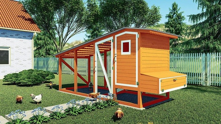 Charm-Packed Chicken Coop