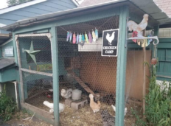 Minnesota Chicken Coop